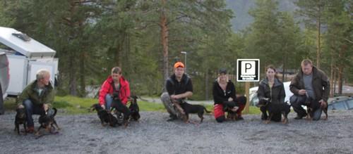 Hunder som er eigd eller vårt oppdrett, 29 championat til sammen